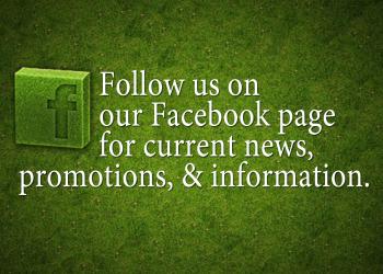 Latest News and Photos